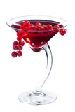 Redcurrant martini cocktail Royalty Free Stock Photo