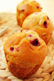 Redcurrant muffins. Closeup of some redcurrant muffins royalty free stock images