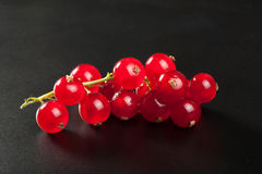Redcurrant over black Royalty Free Stock Image