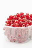 Redcurrant in plastic container Royalty Free Stock Photo