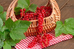 Redcurrant on red checkered tablecloth Stock Photo
