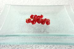 Redcurrant in square glass dish Stock Photography