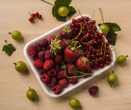 Redcurrant, strawberry and gooseberry. On bowl Royalty Free Stock Photography