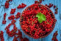 Redcurrant w łozinowym pucharze na stole Obrazy Royalty Free