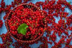 Redcurrant w łozinowym pucharze na stole Zdjęcie Royalty Free