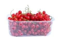 Redcurrant on white Stock Photo