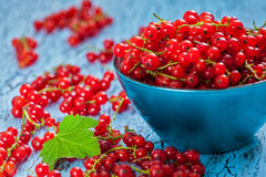 Redcurrant in wicker bowl on the table Stock Photos