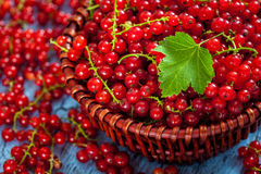Redcurrant in wicker bowl on the table Royalty Free Stock Photography
