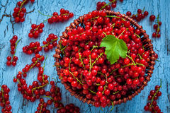 Redcurrant in wicker bowl on the table Royalty Free Stock Images