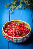 Redcurrant in wooden bowl. Stock Photo