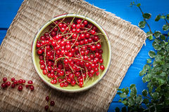 Redcurrant in wooden bowl. Stock Photography