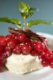 redcurrants παγωτού κάστανων Στοκ φωτογραφίες με δικαίωμα ελεύθερης χρήσης