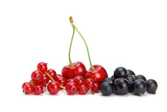 Redcurrants,blackcurrants and red cherries. Isolated on the white background royalty free stock photo