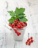 Redcurrants in bucket over white wooden background Royalty Free Stock Photography
