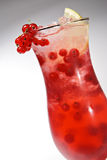 Redcurrants Cocktail Stock Afbeeldingen