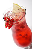 Redcurrants Cocktail Royalty-vrije Stock Fotografie