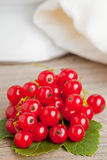 Redcurrants Stock Photography