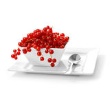Redcurrants Royalty Free Stock Images