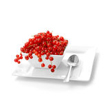 Redcurrants Royalty Free Stock Image