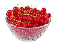 Redcurrants in glass bowl Royalty Free Stock Photos
