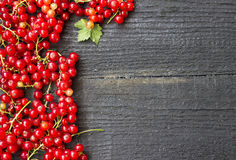 Redcurrants with leaves Royalty Free Stock Photo