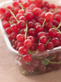 Redcurrants In Packaging. Close Up Of Redcurrants In Packaging Stock Image