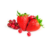 Redcurrants and strawberries Royalty Free Stock Images
