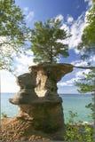 Reddingslijn van een boom op rotsen voor:stellen-Rotsen stock foto's