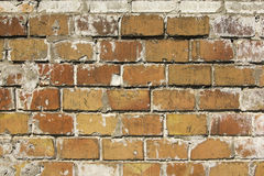 Reddish brown old brick wall. Abstraction. Textured background closeup Royalty Free Stock Image