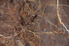 Reddish brown stone with cracks and stains. On the surface Royalty Free Stock Images