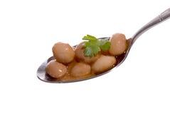 Reddish-colored bean (Barbunya Pilaki) Royalty Free Stock Photos