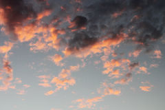 Reddish dark grey cloud. In autumn time royalty free stock images