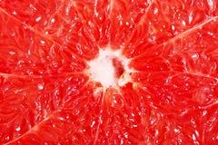Reddish flesh- pulp of grapefruit. Stock Image