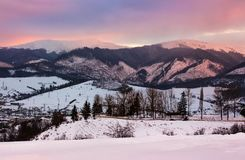 Reddish winter evening over the mountains. Beautiful light on snowy tops of Borzhava mountain ridge. location Volovets serpentine pass, Ukraine Royalty Free Stock Photography
