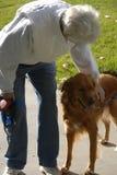 reddog Arkivbilder