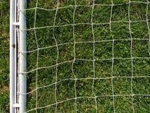 Rede branca contra a grama verde Fotos de Stock