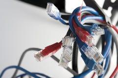 A rede cabografa o close-up dos conectores da conexão de rede RG-45 fotos de stock royalty free