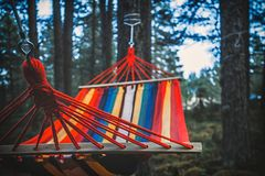 Rede colorida que pendura no foco seletivo da floresta Foto de Stock Royalty Free