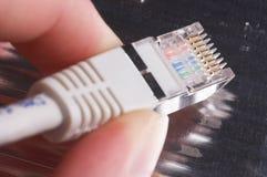 Rede-Conector Fotografia de Stock Royalty Free