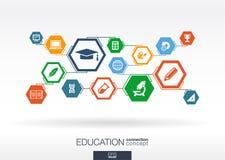Rede da educação Fundo abstrato do hexágono ilustração do vetor