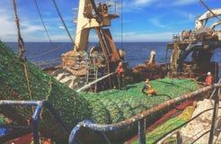 Rede de arrasto a bordo Fotografia de Stock