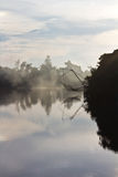 Rede de mergulho quadrada no canal. fotos de stock