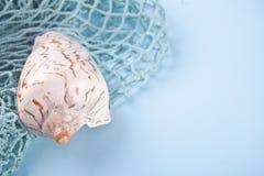 Rede de pesca e escudos grandes do mar Copie o espaço foto de stock royalty free