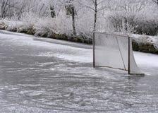 Rede do anel e do hóquei do gelo Fotografia de Stock