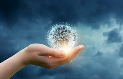 Rede do negócio do globo na mão Imagens de Stock Royalty Free