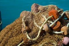 Rede dos peixes Fotos de Stock Royalty Free