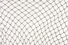 Rede dos peixes Fotografia de Stock