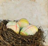 rede för easter ägggrunge Royaltyfri Fotografi