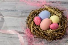 Rede för fågel` s med easter ägg Royaltyfri Bild