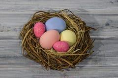 Rede för fågel` s med easter ägg Royaltyfri Fotografi